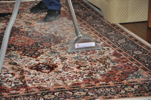 Highland Carpet Area Rug Cleaning