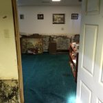 mould - family room thru door