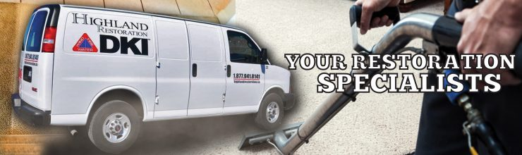 van manipulation carpet cleaning